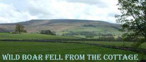 stouphill gate wildboar 1.jpg